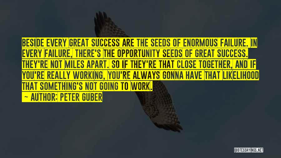Failure And Opportunity Quotes By Peter Guber