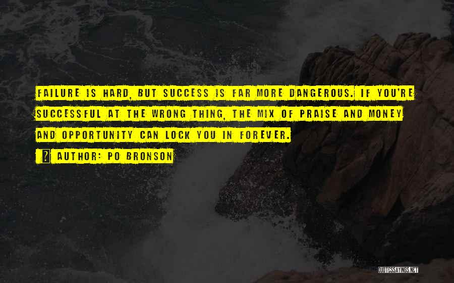 Failure And Opportunity Quotes By Po Bronson