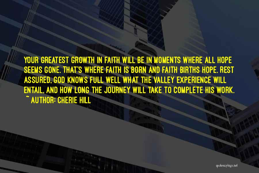 Faith In The Valley Quotes By Cherie Hill