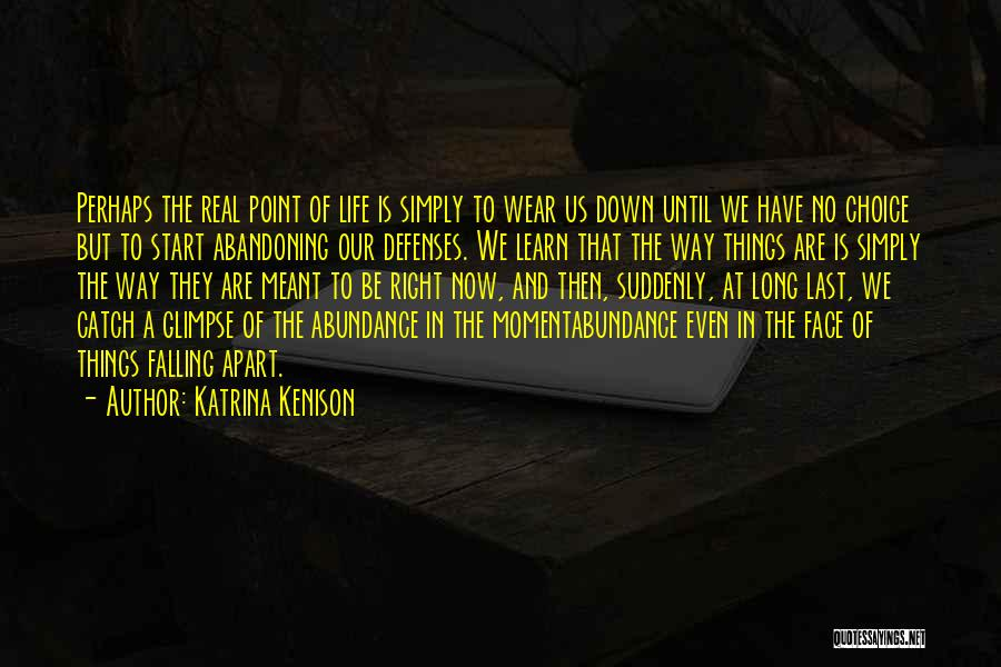 Falling Down In Life Quotes By Katrina Kenison