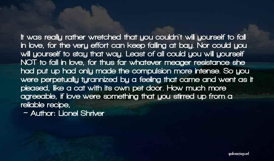 Falling Down In Life Quotes By Lionel Shriver