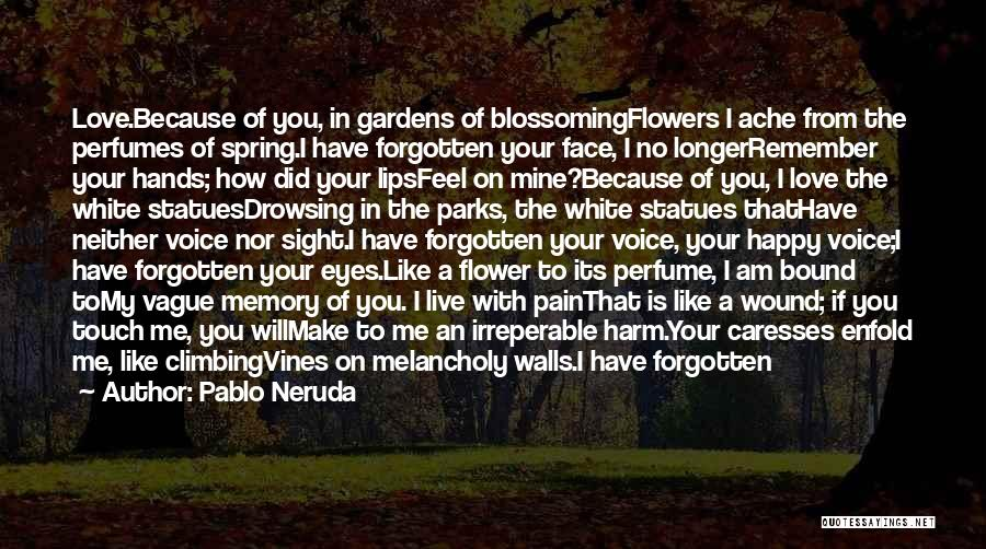 Falling In Love All Over Again Quotes By Pablo Neruda