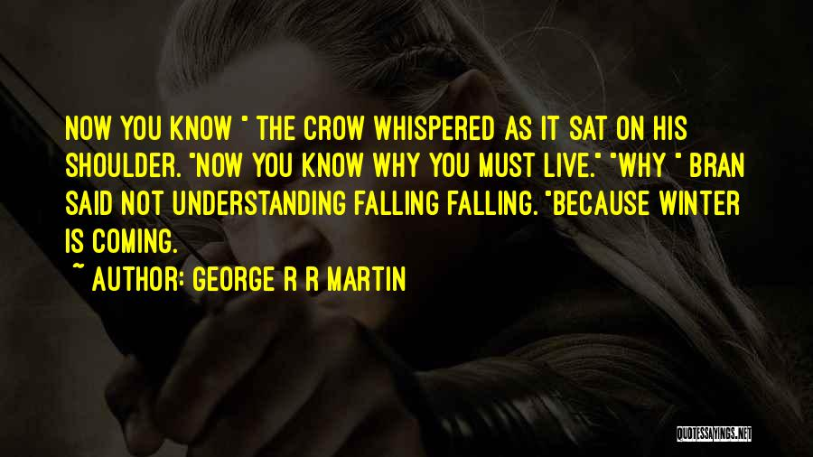 Falling Quotes By George R R Martin