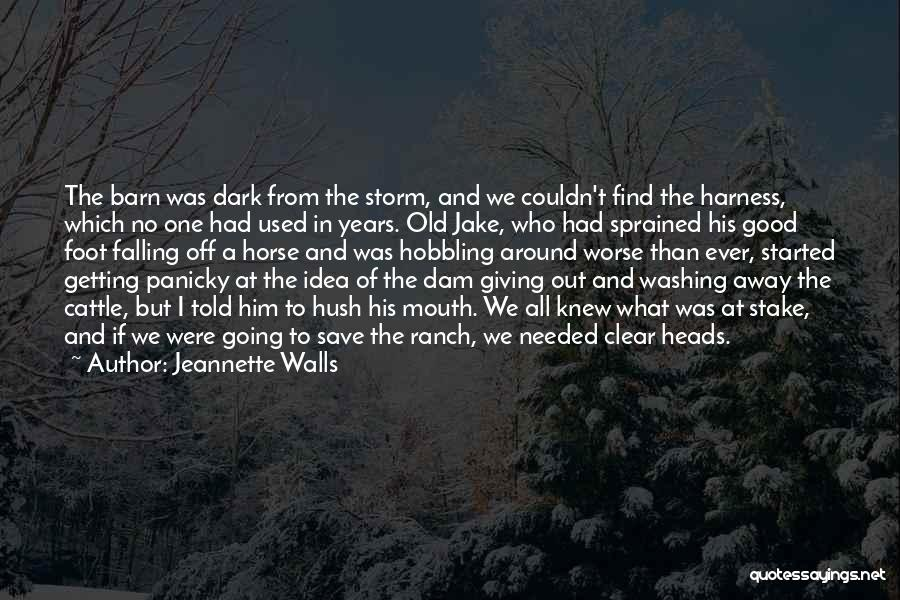 Falling Quotes By Jeannette Walls