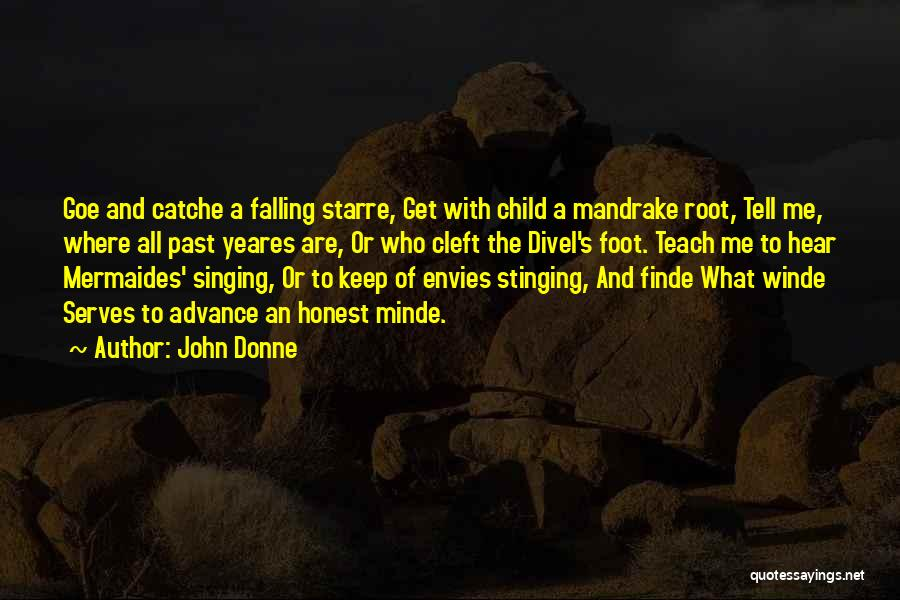 Falling Quotes By John Donne