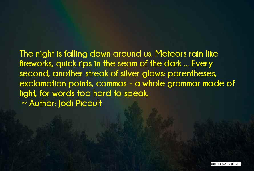 Falling Too Hard Quotes By Jodi Picoult