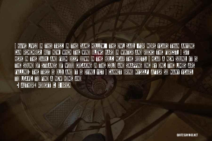 Falling Too Hard Quotes By Robert C. O'Brien