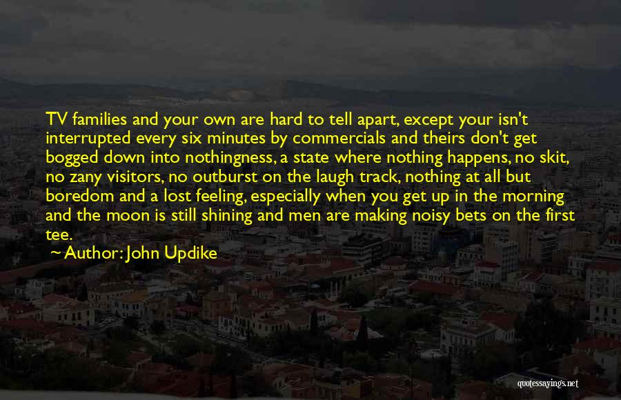 Family Far Apart Quotes By John Updike