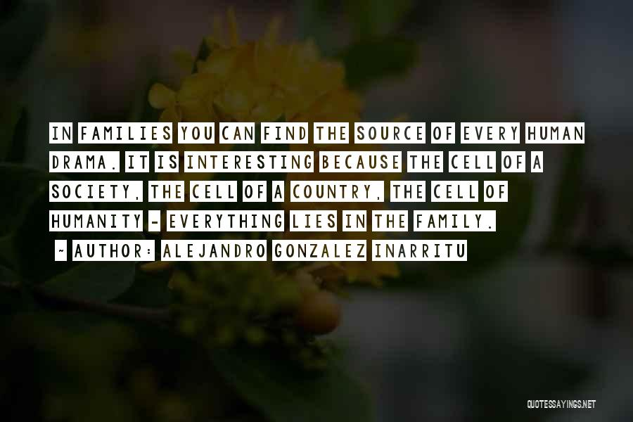Family Is Everything Quotes By Alejandro Gonzalez Inarritu