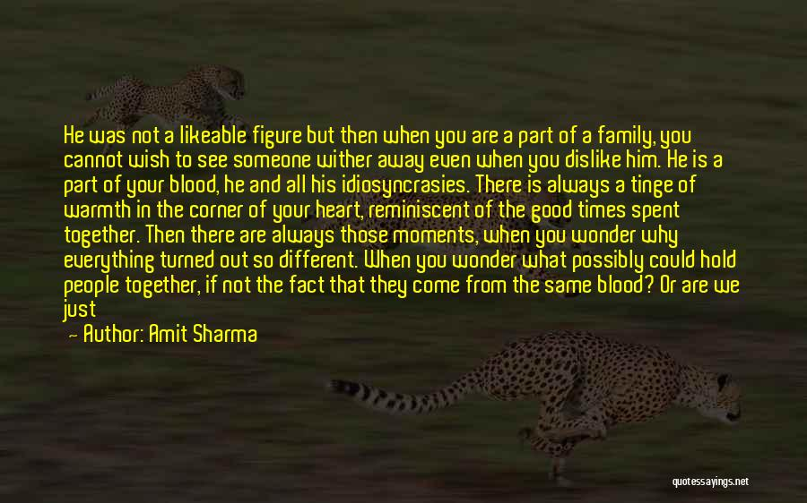 Family Is Just Blood Quotes By Amit Sharma