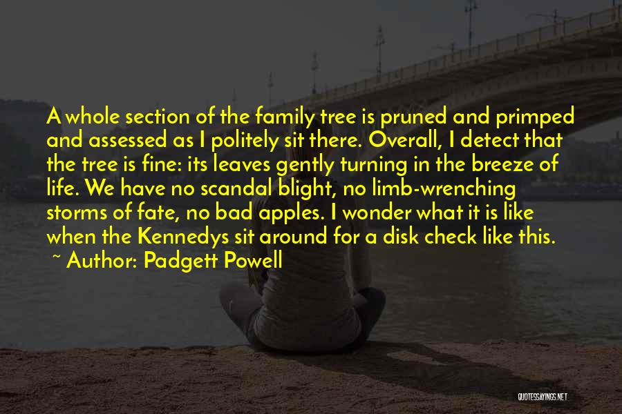 Family Turning On You Quotes By Padgett Powell