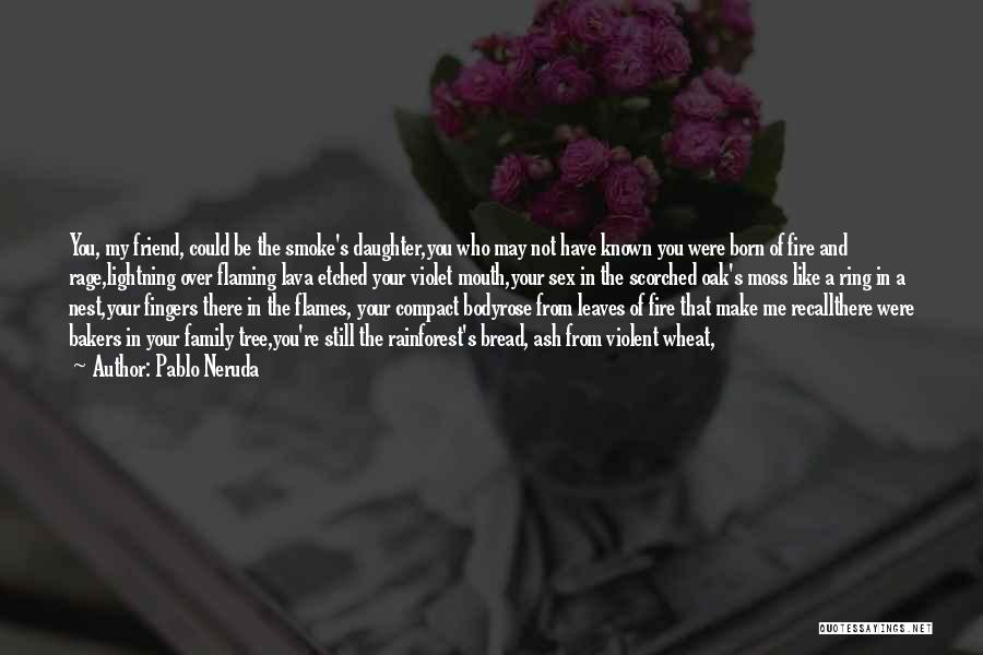 Family You Have Lost Quotes By Pablo Neruda