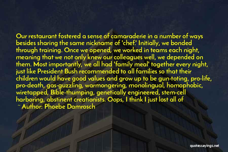 Family You Have Lost Quotes By Phoebe Damrosch