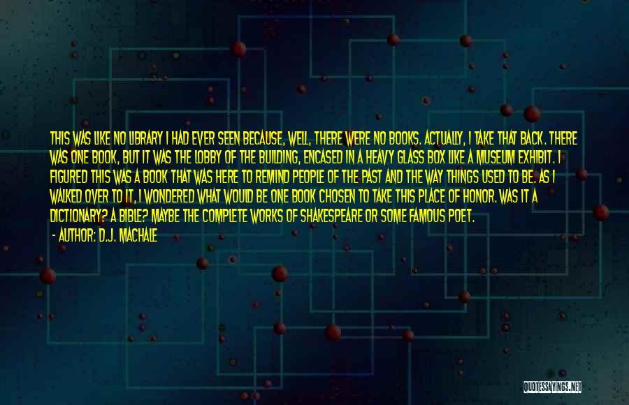 Famous Mr. Big Quotes By D.J. MacHale