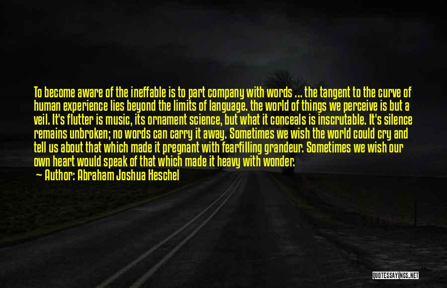 Far Cry Experience Quotes By Abraham Joshua Heschel