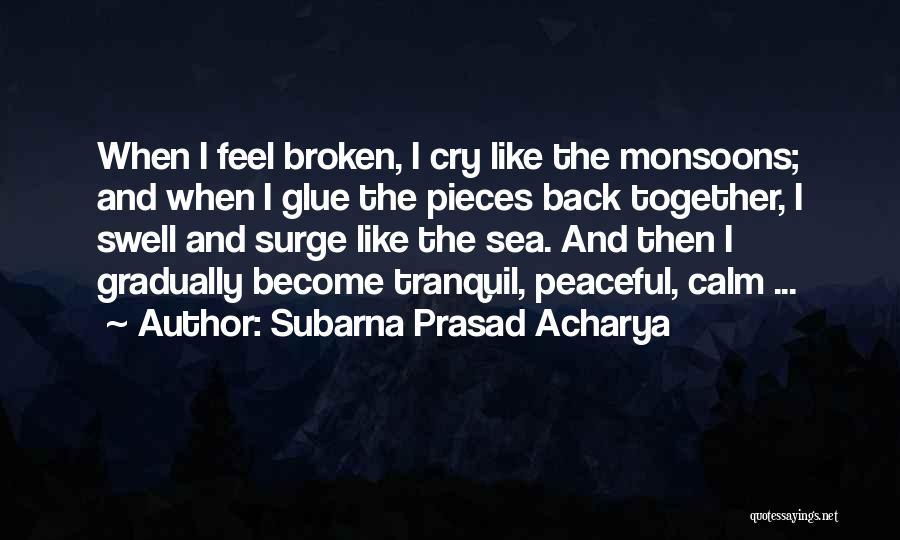 Far Cry Experience Quotes By Subarna Prasad Acharya