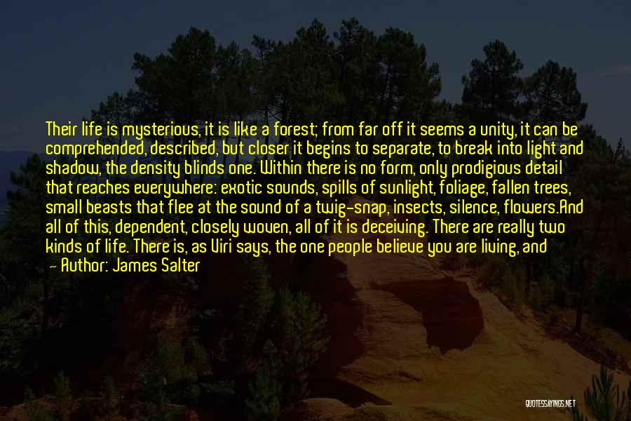 Far Off Quotes By James Salter