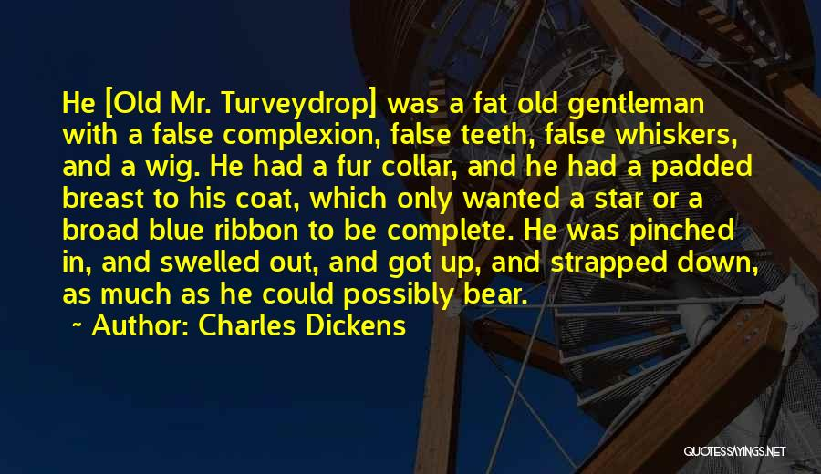 Fat Quotes By Charles Dickens