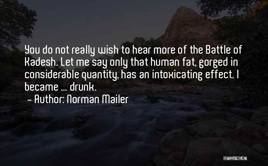 Fat Quotes By Norman Mailer