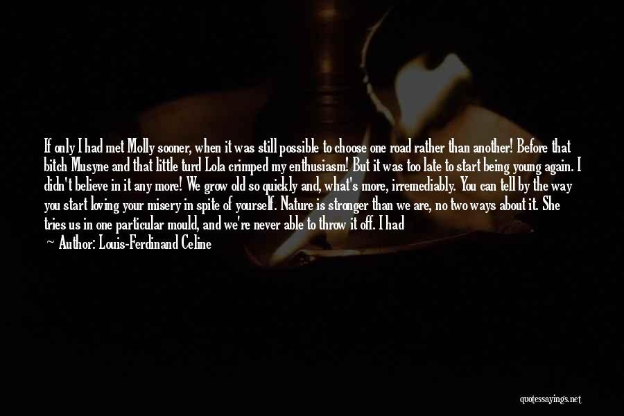 Fate We Met Quotes By Louis-Ferdinand Celine