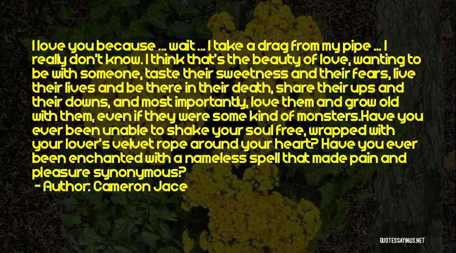Fears Of Love Quotes By Cameron Jace