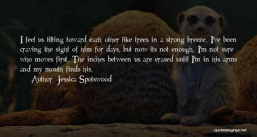 Feel The Breeze Quotes By Jessica Spotswood