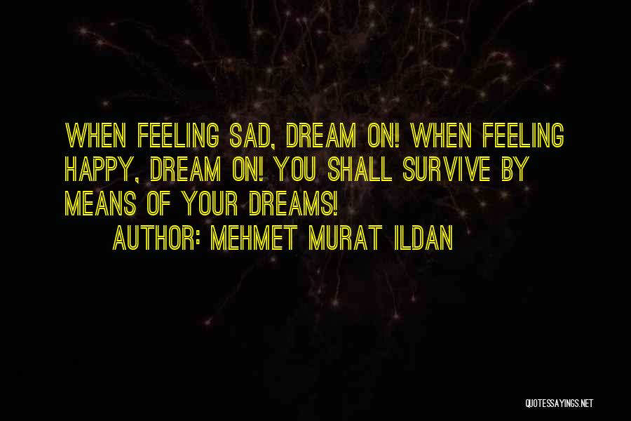 Feeling Both Happy And Sad Quotes By Mehmet Murat Ildan