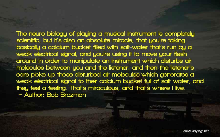 Feeling Disturbed Quotes By Bob Brozman