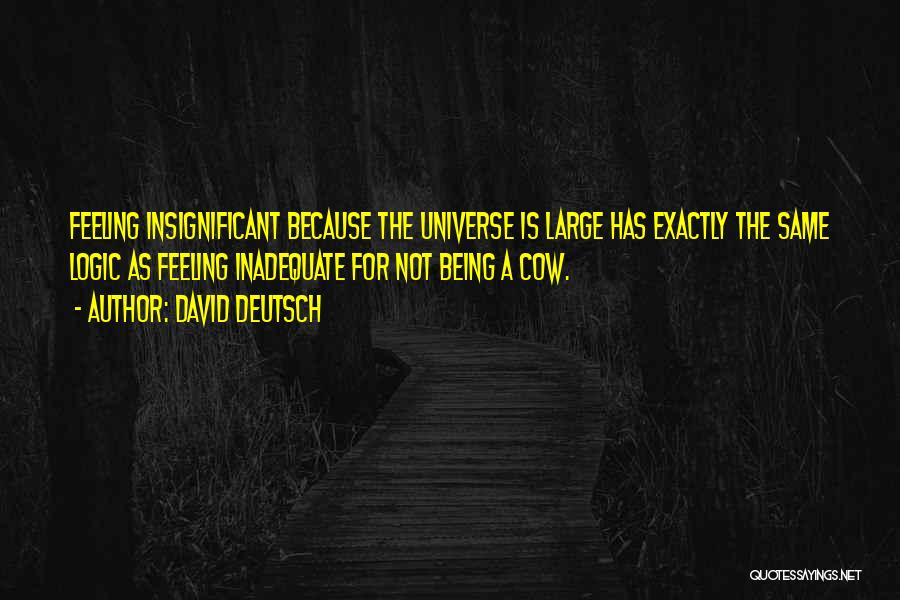 Feeling Insignificant Quotes By David Deutsch