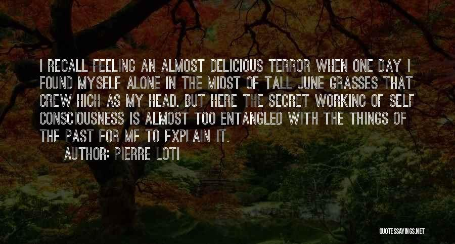 Feeling Of Alone Quotes By Pierre Loti