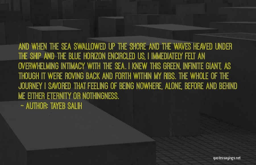 Feeling Of Alone Quotes By Tayeb Salih