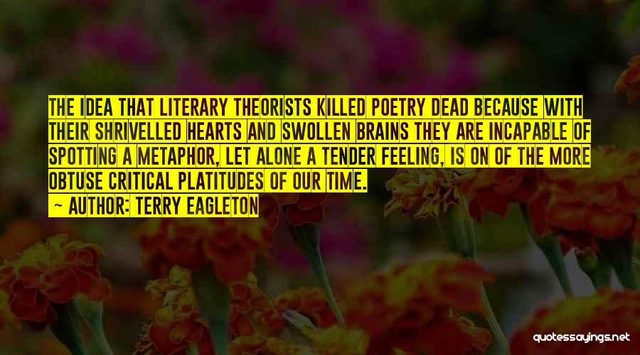 Feeling Of Alone Quotes By Terry Eagleton