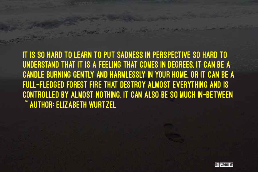 Feeling Sadness Quotes By Elizabeth Wurtzel