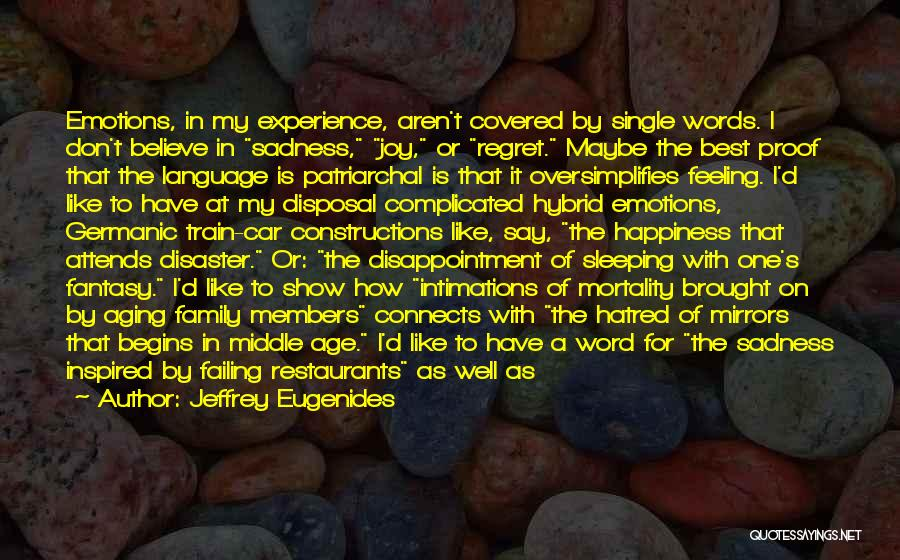 Feeling Sadness Quotes By Jeffrey Eugenides