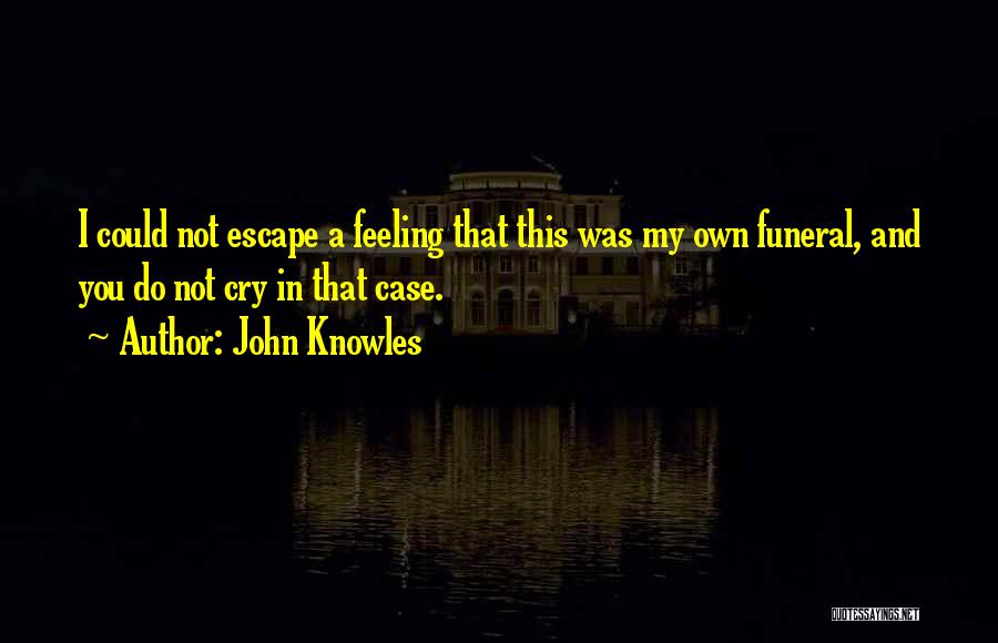 Feeling Sadness Quotes By John Knowles