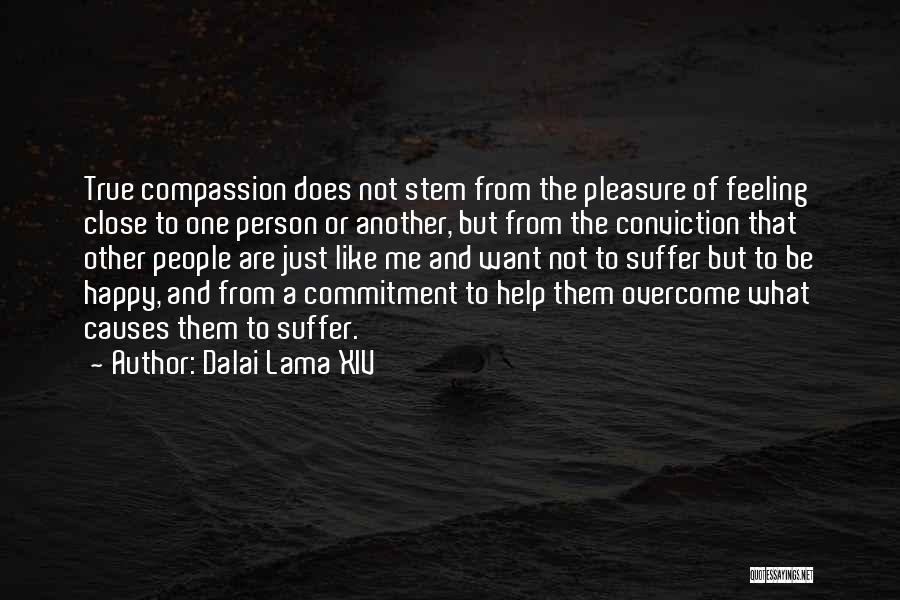 Feeling So Much Happy Quotes By Dalai Lama XIV