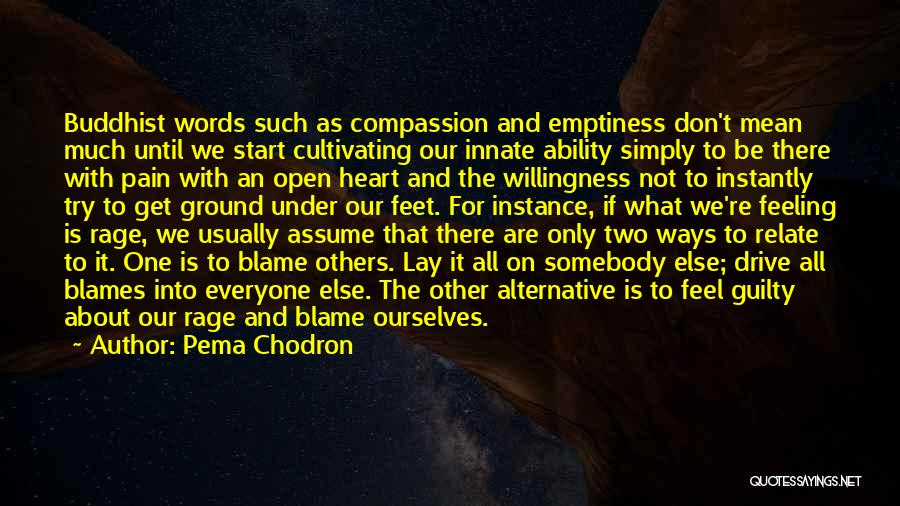 Feeling Someone Else's Pain Quotes By Pema Chodron