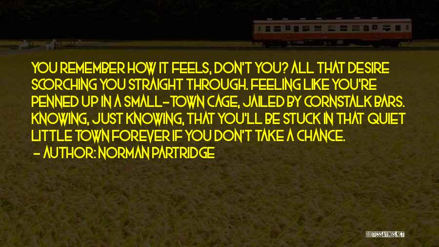 Feeling Stuck Quotes By Norman Partridge