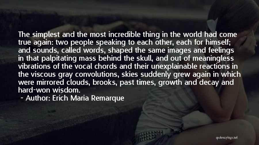 Feelings Images Quotes By Erich Maria Remarque
