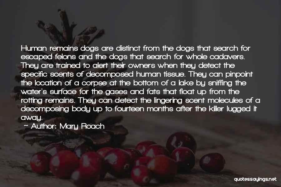 Felons Quotes By Mary Roach