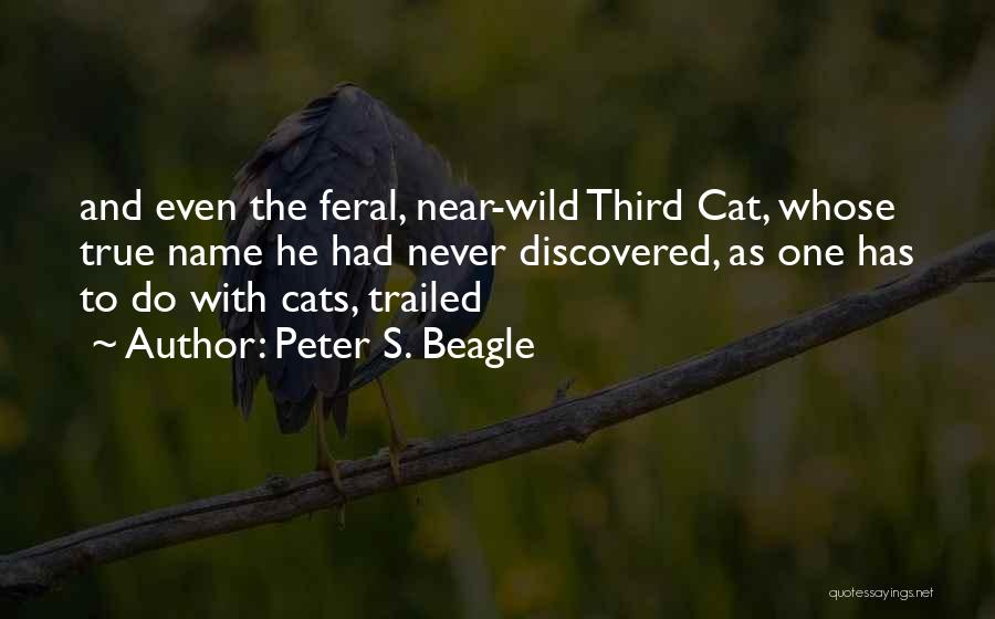 Feral Quotes By Peter S. Beagle
