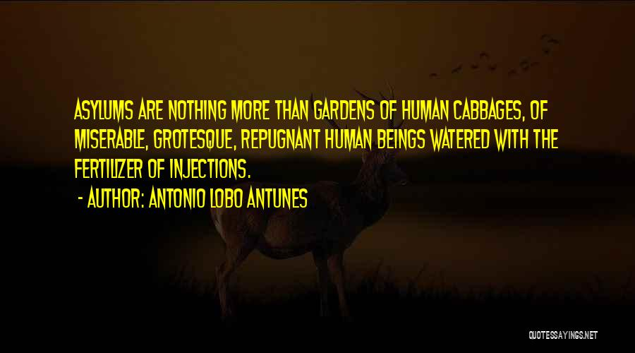 Fertilizer Quotes By Antonio Lobo Antunes