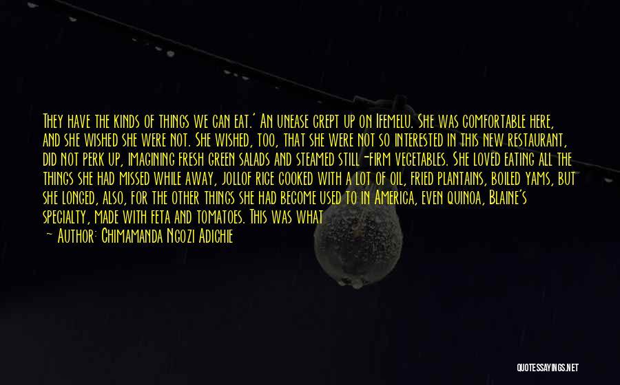 Feta Quotes By Chimamanda Ngozi Adichie