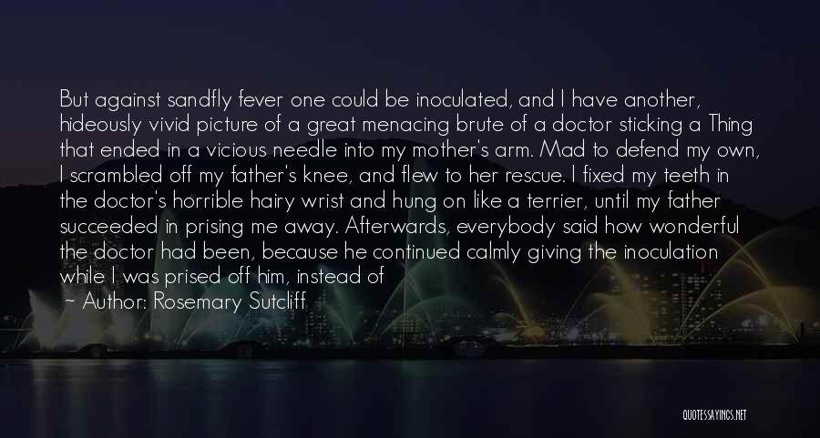 Fever Go Away Quotes By Rosemary Sutcliff