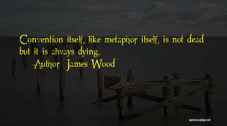 Fiction Literature Quotes By James Wood