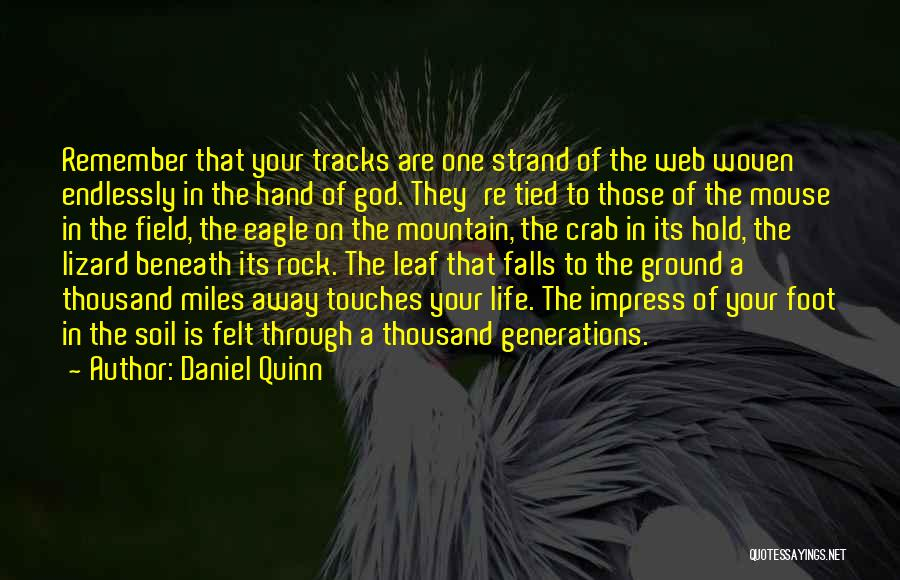 Field Mouse Quotes By Daniel Quinn