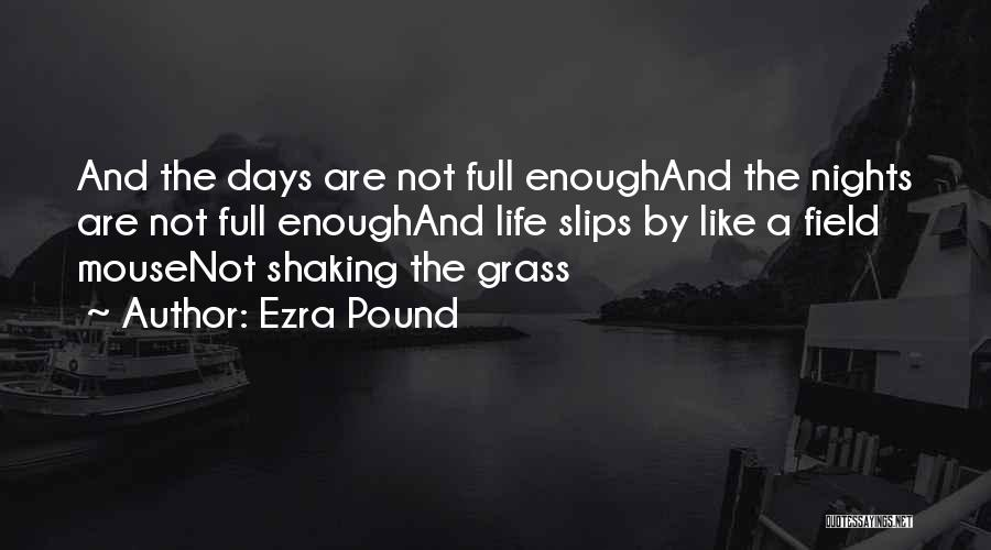 Field Mouse Quotes By Ezra Pound