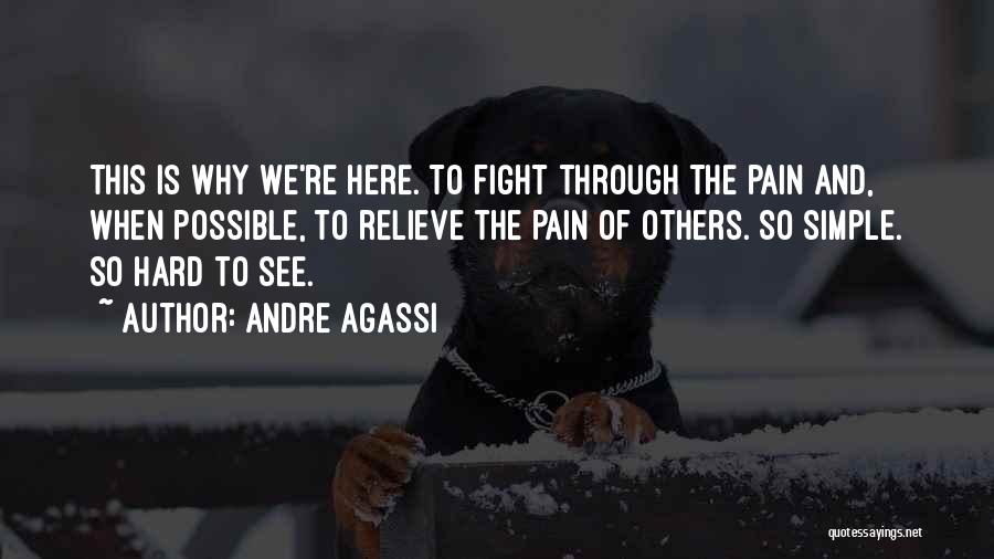 Fight Through The Pain Quotes By Andre Agassi