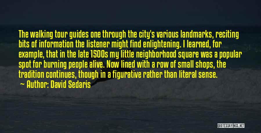 Figurative Quotes By David Sedaris