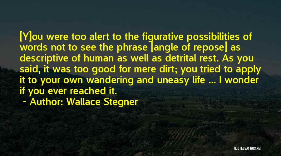 Figurative Quotes By Wallace Stegner